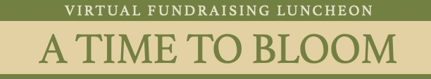 Virtual Fundraising Luncheon, A Time to Rise, cover page image